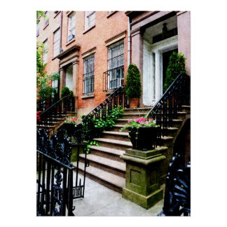 STARTING UNDER $20 - Chelsea Brownstone Poster