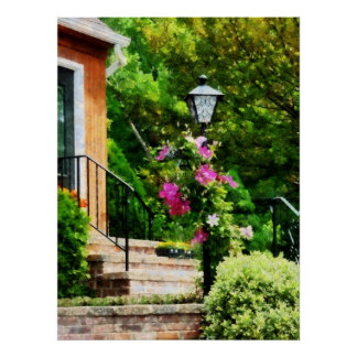 STARTING UNDER $20 - Clematis on Lamp Post Poster