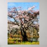 STARTING UNDER $20 - Geese Under Flowering Tree Posters