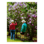 STARTING UNDER $20 - In the Lilac Garden Posters