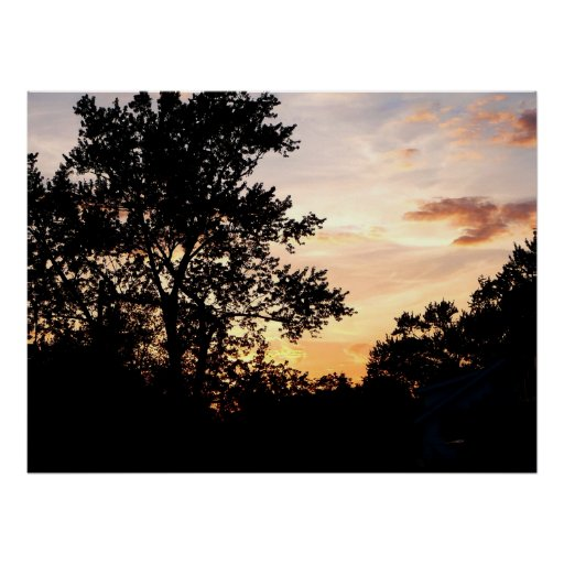 STARTING UNDER $20 - Silhouette Of Trees At Sunset Poster