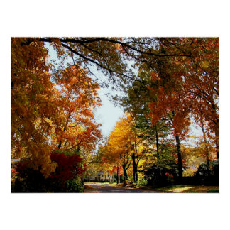 STARTING UNDER $20 - Village Street in Autumn Poster