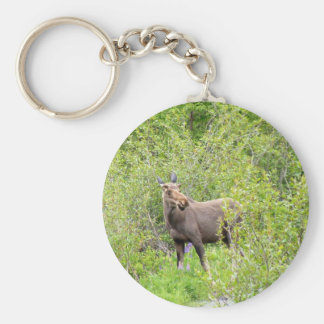 Startled Young Moose Basic Round Button Keychain