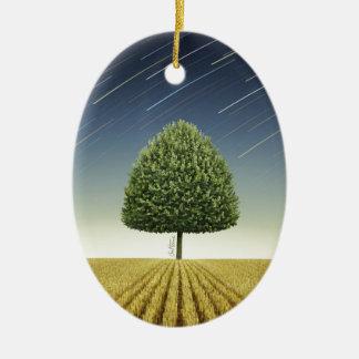 Startrail y árbol adornos de navidad
