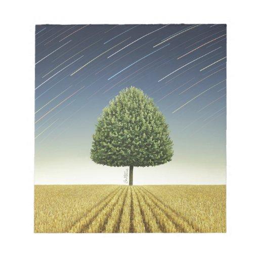 Startrail y árbol bloc