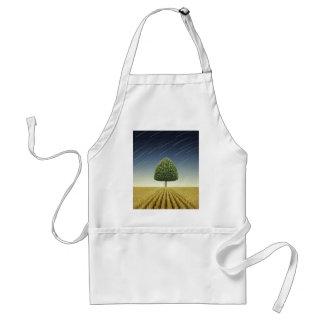 Startrail y árbol delantal