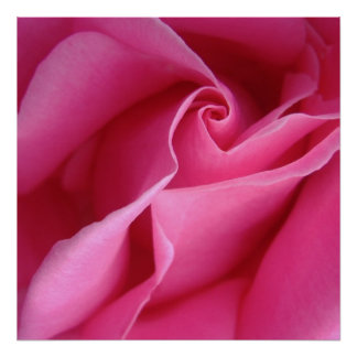 Starts at $12.80 Diagonal of Pink Rose Wall Decor