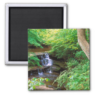 Starved Rock Park, Illinois 2 Inch Square Magnet