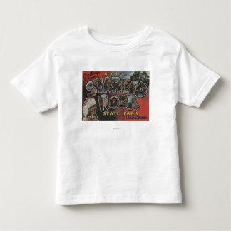 Starved Rock State Park - Large Letter Scenes T-shirt