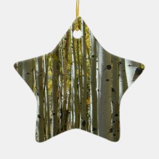 Starwood ornament
