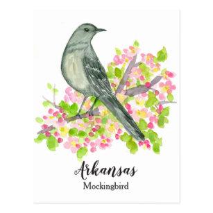 State Bird Of Arkansas Mockingbird Apple Blossom Postcard