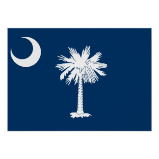 State Flag of South Carolina Poster