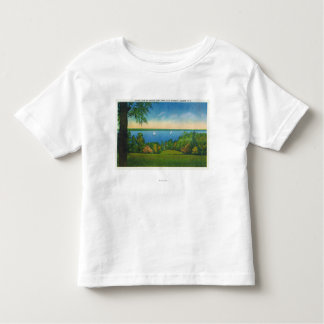 State Hwy Scenic View of Owasco Lake Toddler T-shirt