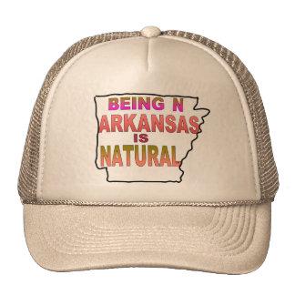 State of Arkansas Trucker Hat