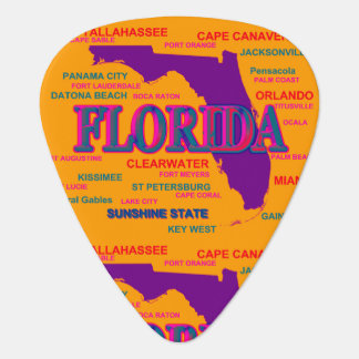 State of Florida Map, Miami, Orlando Guitar Pick