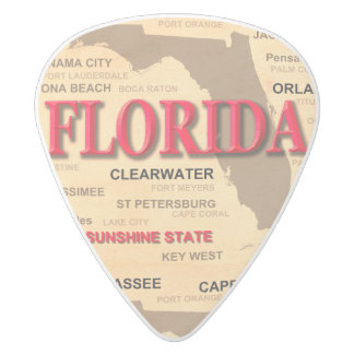 State Of Florida Map, Miami, Orlando, Key West White Delrin Guitar Pick