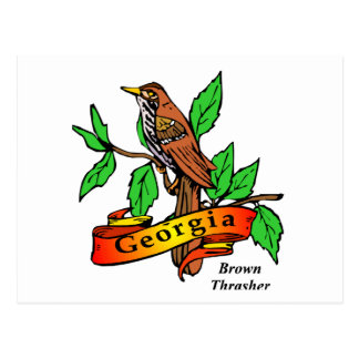 State of Georgia Gifts and Tees for Kids, Adults Postcard