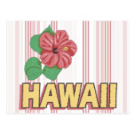 State Of Hawaii Tees and GIfts Postcard