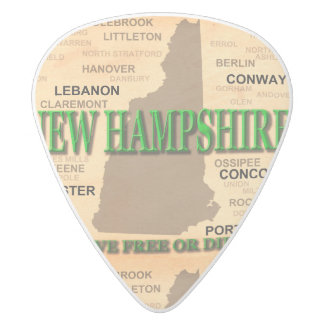 State of New Hampshire Map, concord, Manchester White Delrin Guitar Pick