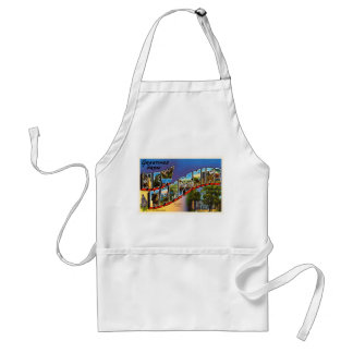 State of New Hampshire NH Vintage Travel Souvenir Adult Apron
