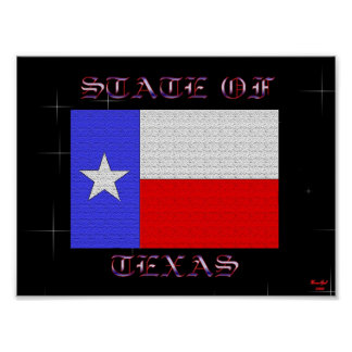 State Of Texas Poster