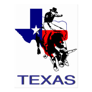 State of Texas Rodeo Bull Rider Postcard