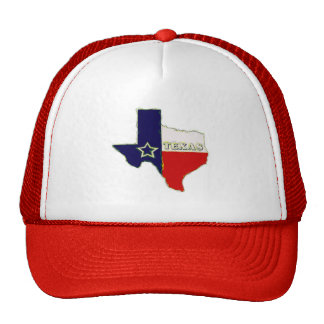 STATE OF TEXAS TRUCKER HAT