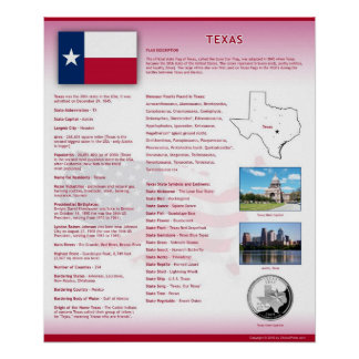 State of Texas,TX Posters