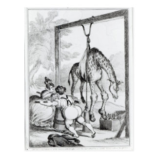 State of the Giraffe, 1829 Postcard