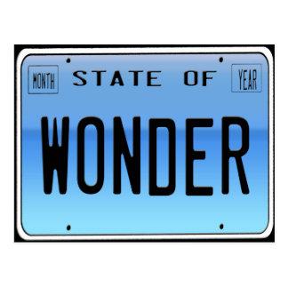 State of  Wonder Postcard