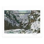 State Park Gorge Suspension Bridge View in Postcards