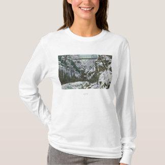 State Park Gorge Suspension Bridge View in T-Shirt