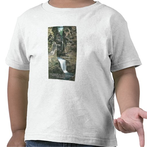 State Park View of Curtain and Cavern Cascades T-shirts