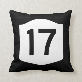 State Route 17, New York, USA Pillow