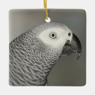 Stately African Grey Parrot Ceramic Ornament