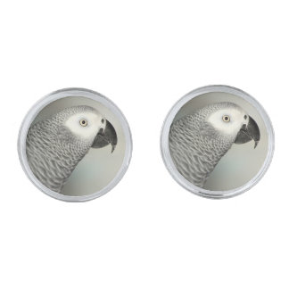 Stately African Grey Parrot Cufflinks