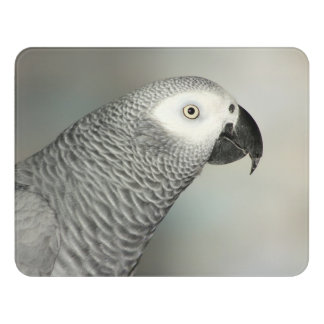 Stately African Grey Parrot Door Sign