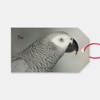 Stately African Grey Parrot Pack Of Gift Tags