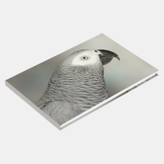 Stately African Grey Parrot Guest Book