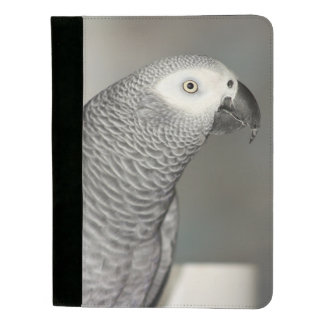 Stately African Grey Parrot Padfolio