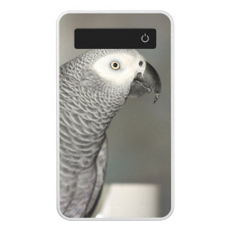 Stately African Grey Parrot Power Bank
