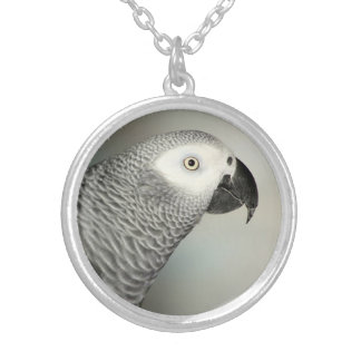 Stately African Grey Parrot Silver Plated Necklace