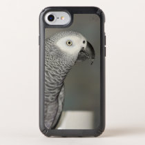 Stately African Grey Parrot Speck iPhone Case