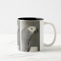 Stately African Grey Parrot Two-Tone Coffee Mug
