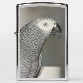 Stately African Grey Parrot Zippo Lighter
