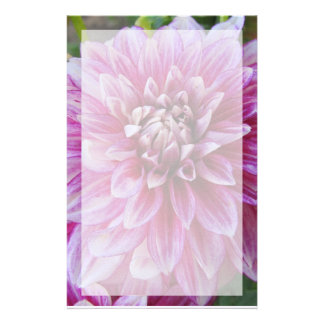 Stationery--Pink Dahlia With Border Stationery