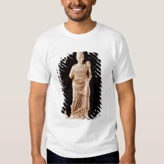 Statue of a tutelary goddess tee shirt