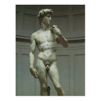 Statue of David by Michelangelo Postcard