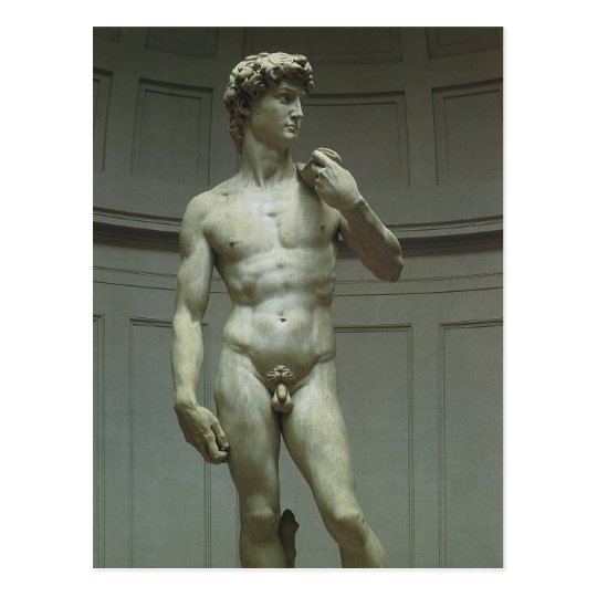 Statue of David by Michelangelo Postcard