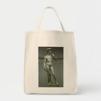 Statue of David by Michelangelo Tote Bag